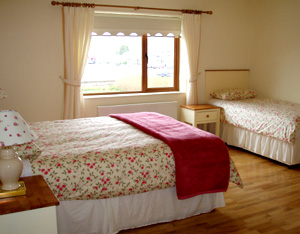 Dingle Accommodation Bedroom